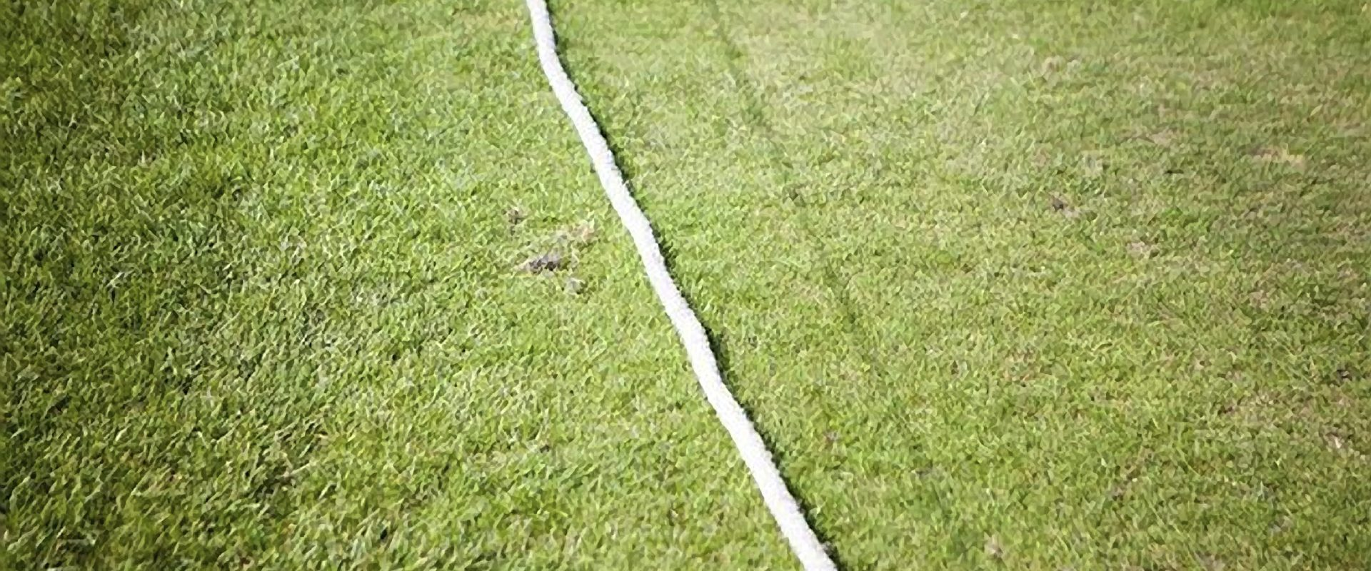cricket ampthill